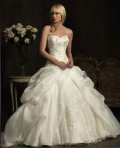 wedding dress - dual