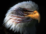 EaglesUp