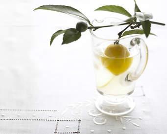 lemonade unborn