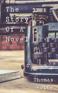 Story of Novel